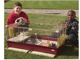 gabbie per gabbia per coniglietti nani e cavie 102 deluxe articoli animali
