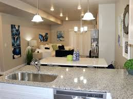 3 bedroom pet friendly apartments 1500 3br 1299ft2 brand new 3 bedroom pet friendly apartments
