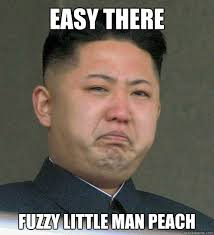 Easy Memes - easy there fuzzy little man peach misunderstood north korea