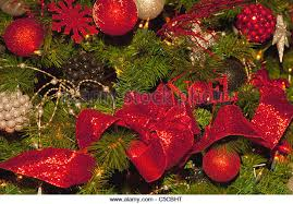 Christmas Decorations Cheap Canada by Alberta Christmas Christmas Trees Stock Photos U0026 Alberta Christmas