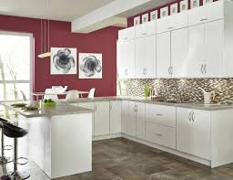 Kitchen Cabinets Tampa Furnitures Appealing Cabinetstogo For Bathroom Or Kitchen