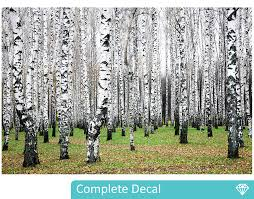 Wall Mural White Birch Trees Birch Trees 2 Wall Mural Your Decal Shop Nz Designer Wall Art