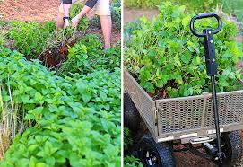 Backyard Bites Planning What To Grow In Your Backyard Vegetable Garden Simple Bites