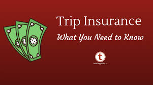 Florida What Is Travel Insurance images 10 things to consider when buying travel insurance for your disney png