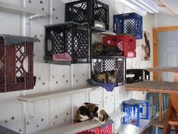 tour the cat room milk crates crates and cat