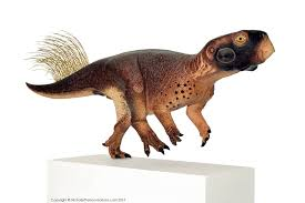 scientists decode the color pattern of the world u0027s cutest dinosaur