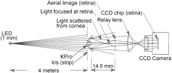 Boston Light Source Optical Functional Properties Of The Boston Keratoprosthesis