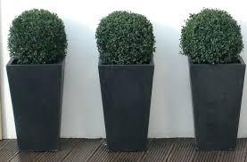 garden pots design ideas front doors pinterest front door flower pots full image for good