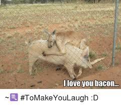 Bacon Meme Generator - 25 best memes about memes memes meme generator
