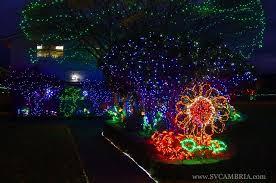 christmas sparkle magic illuminator laser lights rockn christmas