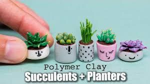 cactus succulents diy crafts kawaii