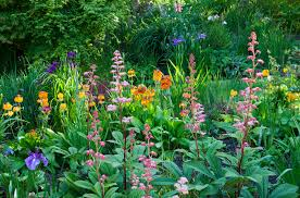 native plants uk garden design garden design with native aquatic plants of britain