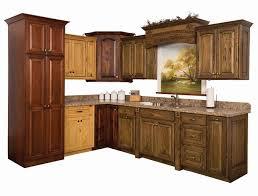 Amish Kitchen Cabinets Indiana Amish Made Kitchen Cabinets Kenangorgun Com