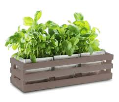 kitchen herb aged grey trough windowsill planter with 3 steel