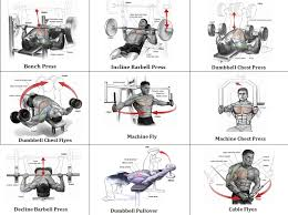 Bench Press Program Chart Mass Building Workout 7 Exercises For An Explosive Chest Gym