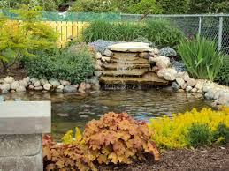 How To Build Backyard Pond by Backyard Ponds Tips For Building A Backyard Pond Ideas For The