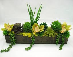 lush silk succulent and orchid arrangement in by branchoflifesilks