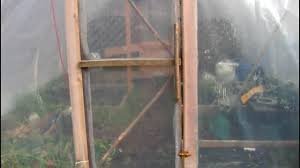 canadian backyard greenhouse winter update youtube