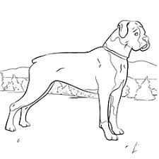 prairie dog coloring page dog coloring pages coloring pages of your favorite dog breeds