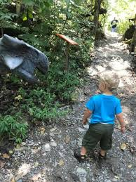 Backyard Adventures Of Middle Tennessee Backyard Terrors Dinosaur Park Bluff City Tn Top Tips Before