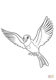 robin sofia coloring free printable coloring