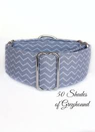 dog collar mardi gras chevron 25 best great dane collars and leashes images on dog