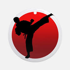 karate ornament cafepress