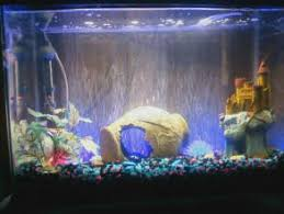color changing led fish tank lights fish tank lights