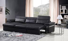 Black Sofa Sleeper Comfortable Sleeper Sofa Ideas Radionigerialagos
