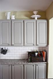 Home Depot Kitchen Cabinets Reviews by Martha Stewart Kitchen Cabinets Home Depot Riccar Us