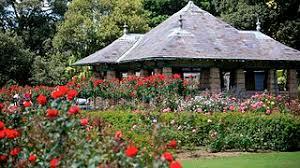 Botanic Garden Sydney Royal Botanic Garden Sydney