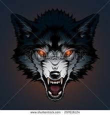 Angry Wolf Meme - werewolf stock images royalty free images vectors shutterstock