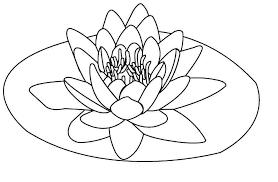 free printable lotus coloring pages kids