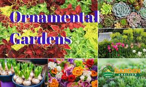 ornamental gardens garden ambition