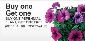 flowers coupon home depot garden club b1g1 perennials coupon