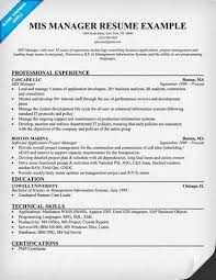 Shidduch Resume Sample by Mis Resume Example Mis Executive Resume Best Sample Resume Mis