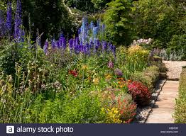 English Cottage Gardens Photos - classic summer english cottage garden with herbaceous border stock