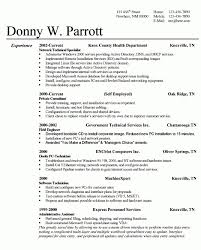 effective resume format successful resume pretentious design successful resume 7