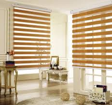 12 Blinds 12 Popular Zebra Window Blinds Living Room Top Inspirations