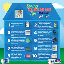 spring cleaning tips 5 must have spring cleaning items kleinworth co