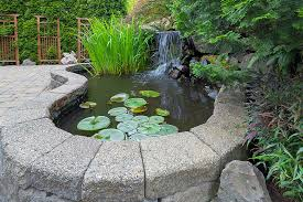 Backyard Pond Supplies by Living Waters Pond Supplies Lancaster Oh Pond Supplies Pond