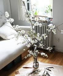 Decorative Sticks For Floor Vases Diy The Magical Powers Of White Cherry Blossoms Gardenista