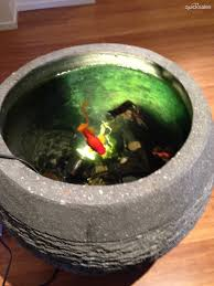 indoor fish ponds crowdbuild for