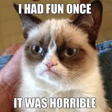 Memes Of 2012 - ermahgerd the 12 best memes of 2012