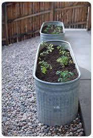 206 best edible garden images on pinterest gardening edible