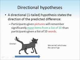 hypotheses tutorial youtube