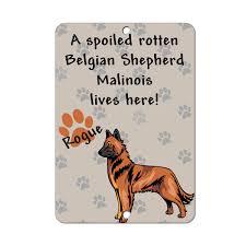belgian sheepdog gifts spoiled rotten belgian shepherd malinois dog lives here metal sign