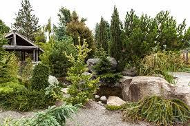 Rock Garden Seattle Wa South Seattle College Western Region