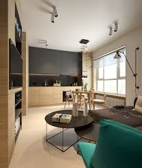 apartment themes small apartment interiors embracing character themes