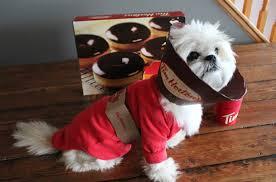 Coffee Halloween Costume Diy Dog Halloween Costume Tim Hortons Coffee Cup